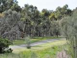79 Sun Orchid Drive Chiton, SA 5211