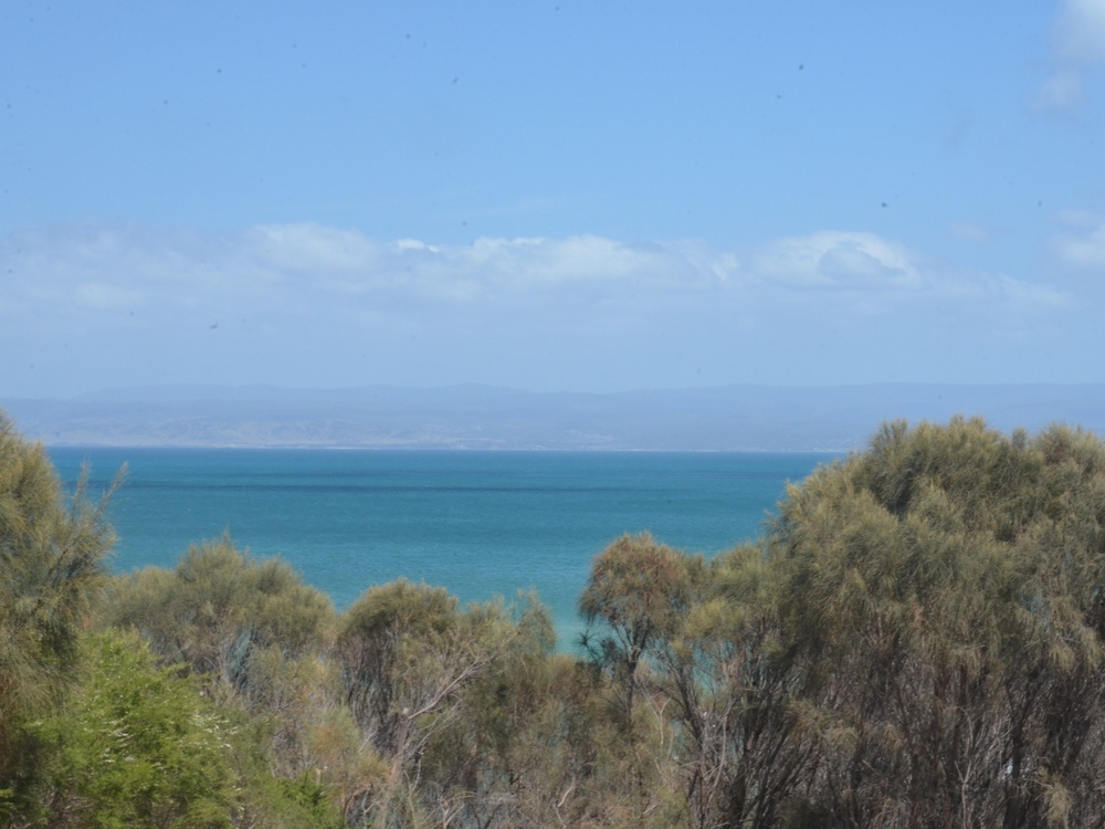 45 Oyster Bay Court Coles Bay, TAS 7215
