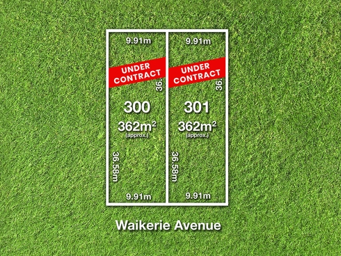 33 Waikerie Avenue Hope Valley, SA 5090