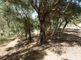 Lot 298 Emerald Place Mount Richon, WA 6112