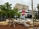 21 Bowes Place Phillip, ACT 2606
