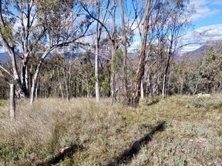 86 Pinegrove Rd Capertee , NSW, 2846