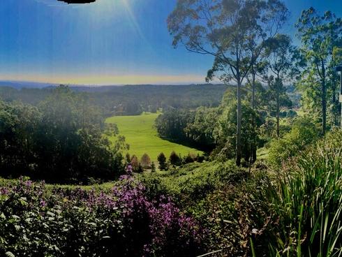 93-95 Lyrebird Ridge Road Springbrook, QLD 4213