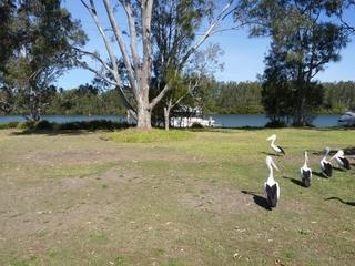 148 Dora Street Dora Creek , NSW, 2264