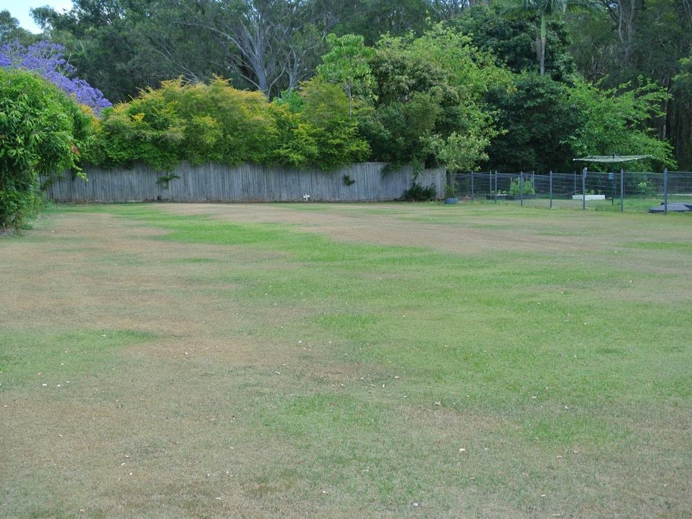 21 Squire Street Macleay Island, QLD 4184