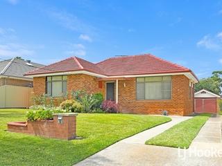 11 Moller Avenue Birrong, NSW 2143