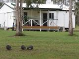 126 Dunlop Road Esk, QLD 4312