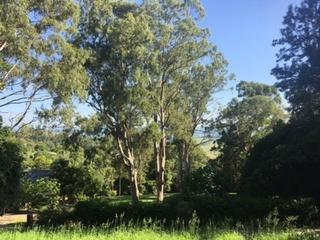 28 Redwood Grove Goonellabah , NSW, 2480