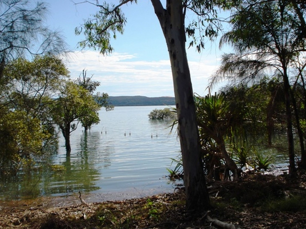 5 Goodsell Crescent Lamb Island, QLD 4184